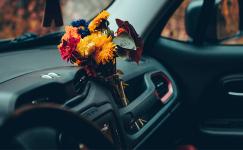 Araba Nasıl Güzel Kokar